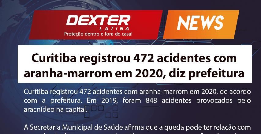 Curitiba registra 472 acidentes com aranha-marrom
